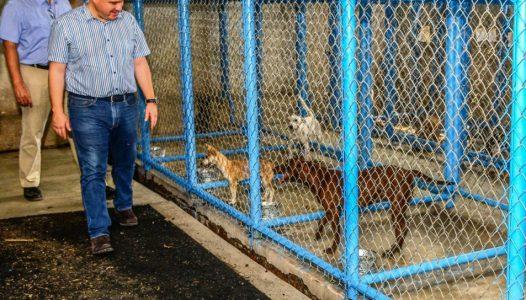hector-insua-supervisa-remodelacion-del-centro-de-control-canino-y-felino