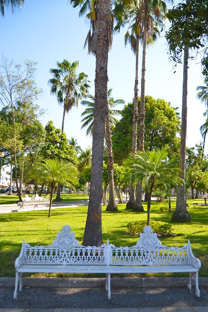 Parques y Jardines -