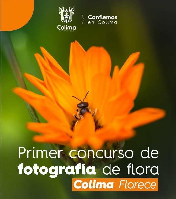 Concurso de Fotografía -
