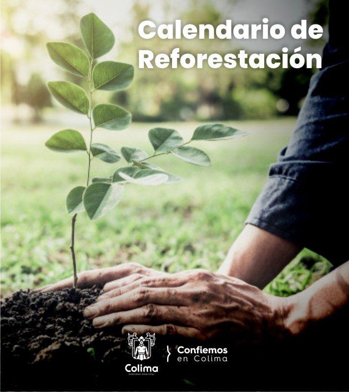 Calendario de Reforestación -